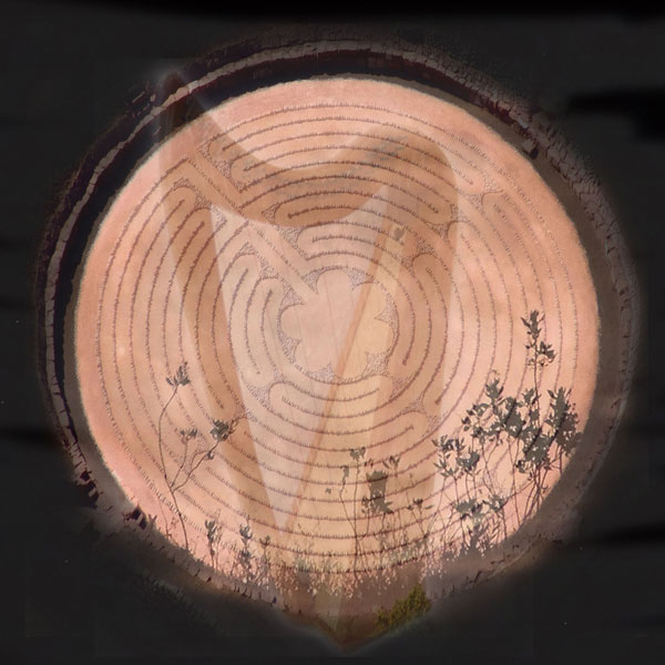 full-moon-harp-in-the-labyrinth-600x600